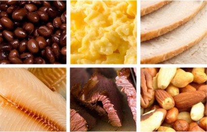 Резултат слика за protein diet