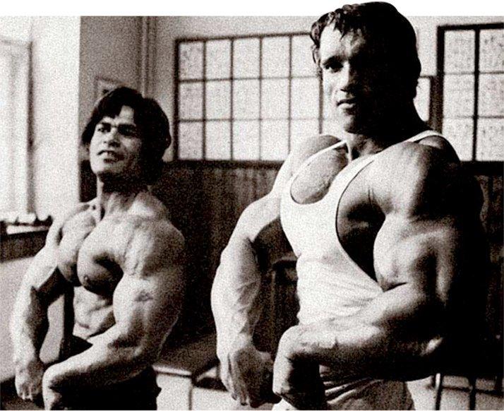 Arnold schwarzenegger gym trainer workout everydayentropy arnold schwarzenegger blueprint trainer day 11 malvernweather Images