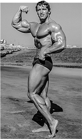 Arnold schwarzenegger blueprint workout mass workout arnold schwarzenegger blueprint trainer day 15 malvernweather Image collections