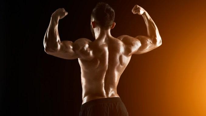 Lat Workouts