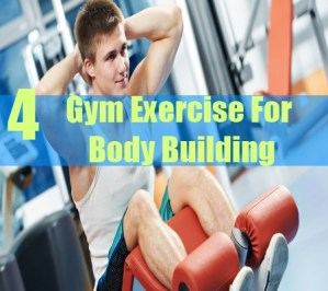 4 Gym Exercise For Body Building