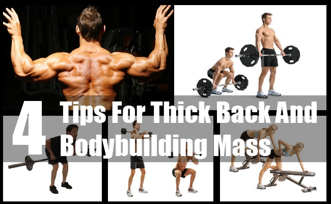 Thick Back And Bodybuilding Mass
