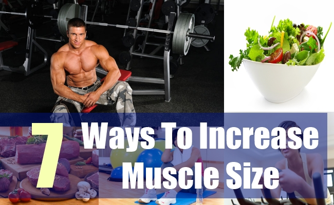 7 Ways To Increase Muscle Size
