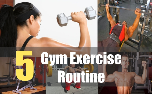 5 Gym Exercise Routine