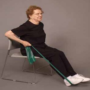 seated rowing exercise