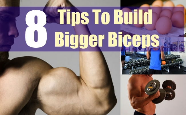 8 Tips To Build Bigger Biceps