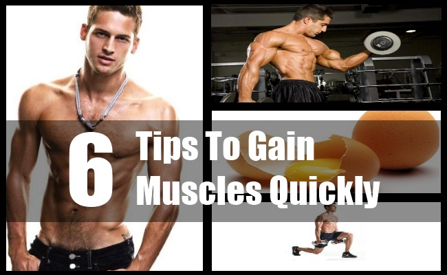 Gain Muscles Quickly
