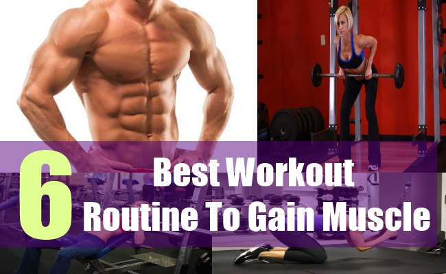 6 Best Workout Routine To Gain Muscle