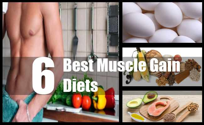 Muscle Gain Diets