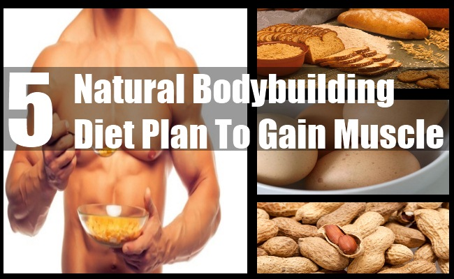 5 Natural Diet Plan For Bodybuilders To Gain Muscle   BodyBuilding ...