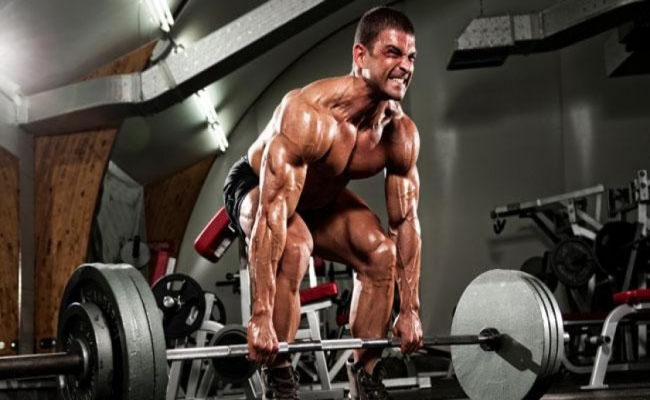 Workouts Contribute To Muscle Growth