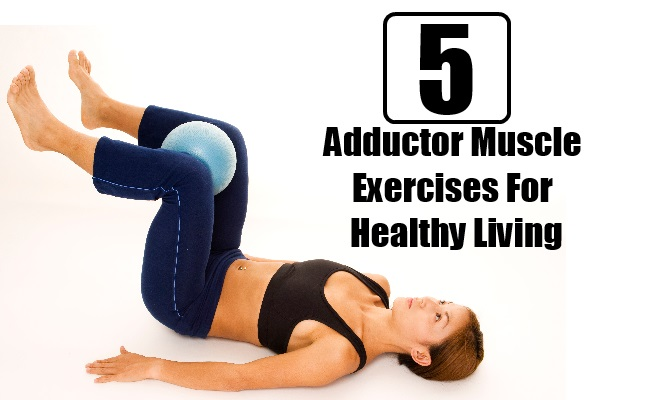 5 Best Adductor Muscle Exercises For Healthy Living