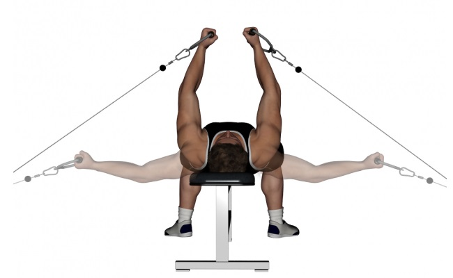 Flat bench cable flye 28 images flat bench cable flyes for Floor underhand cable fly