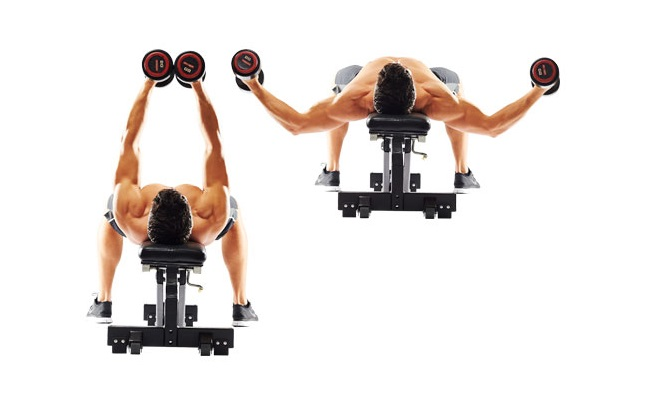 Flat Bench Flyes With Dumbbells