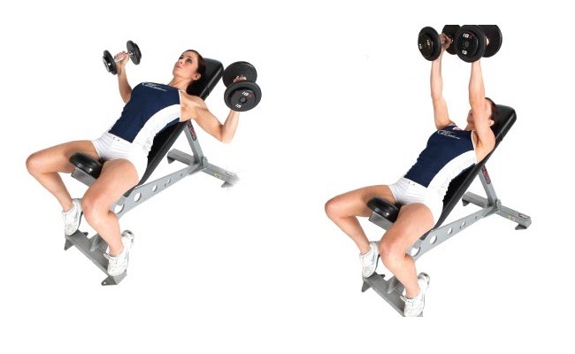 Inclined Bench Flyes With Dumbbells