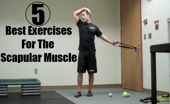 Best Exercises For The Scapular Muscle