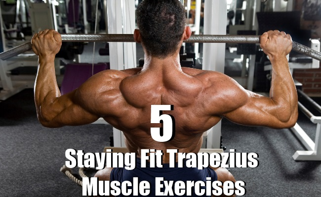 Staying Fit Trapezius Muscle Exercises