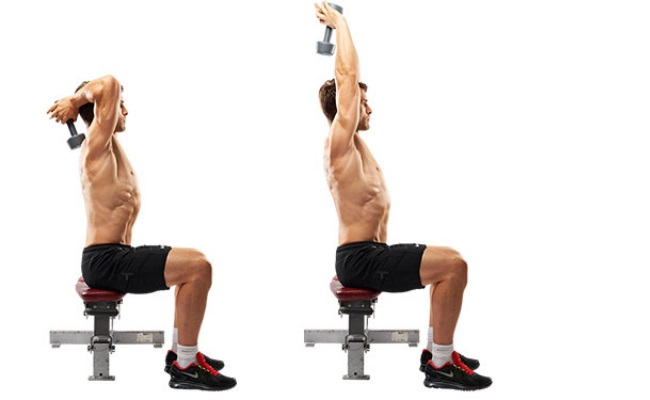 Overhead Triceps Extension