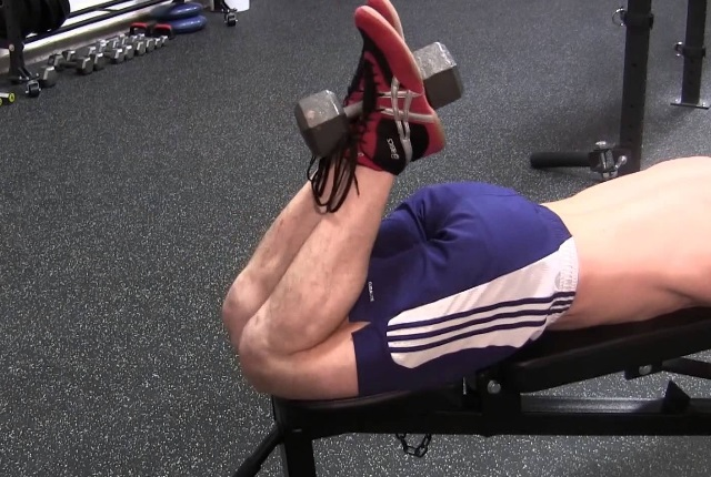 Dumbbell Hamstring Curls
