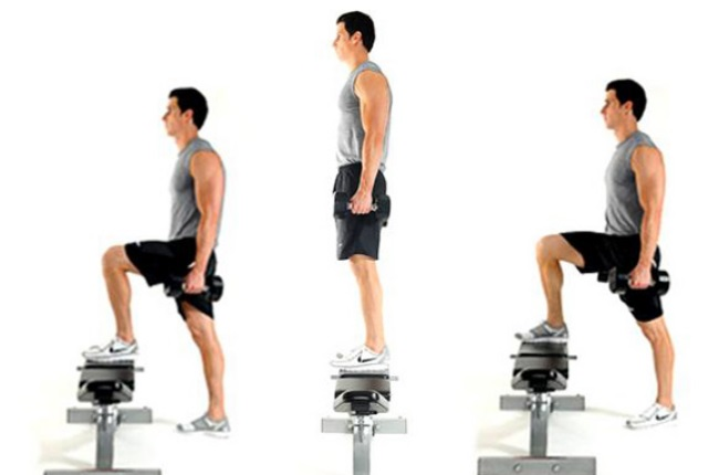 Dumbbell Step Ups