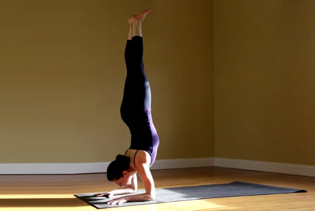 forearm-stand