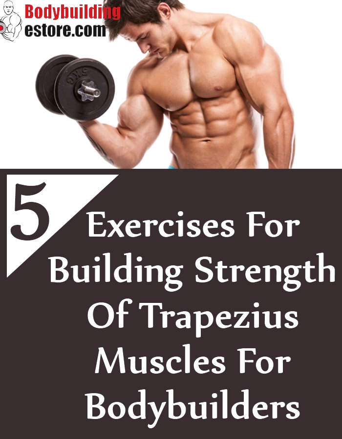 5 Exercises For Building Strength Of Trapezius Muscles For Bodybuilders