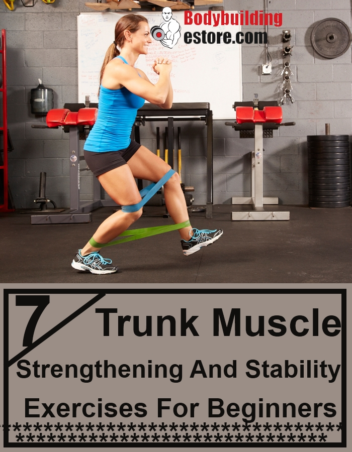 7 Trunk Muscle Strengthening And Stability Exercises For Beginners