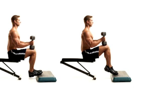Raising Calves In Seated Position