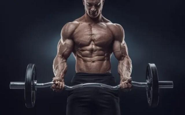 build big muscles
