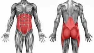 Train je rompstabiliteit met Bodyhoop