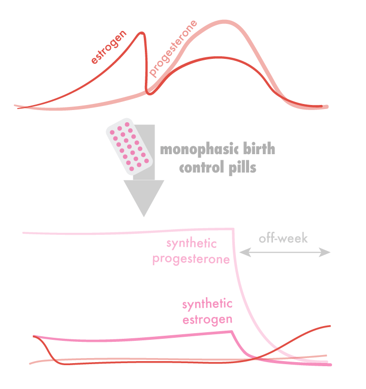 image-1.1-monophasic-graph