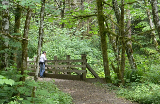 Lime Kiln Trail Snohomish County Washington State