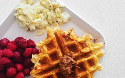 Low-Carb Protein Waffles