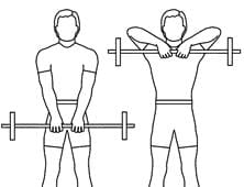 Traditional Upright Row