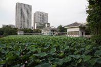 Liwan-Park