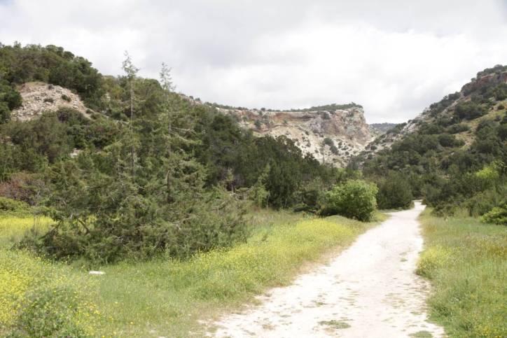 Avakas-Schlucht