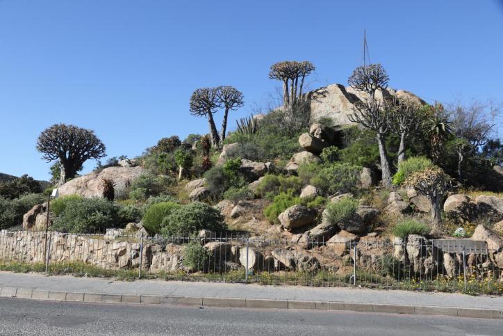 Platz in Springbok