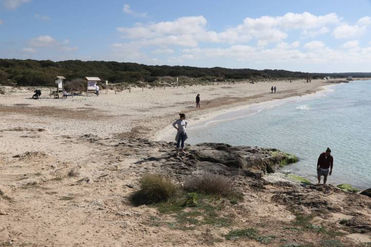 Strand bei Ses Covetes
