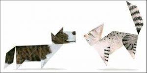 boek en puzzel tangramkat