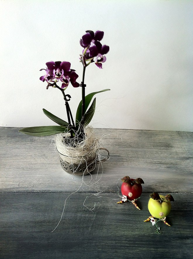 Blumen von börnie's