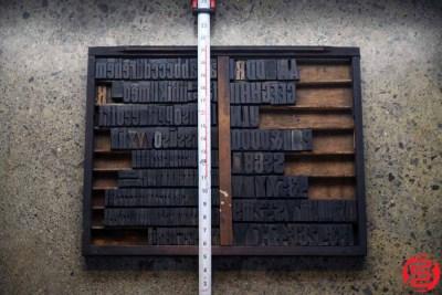 Assorted Letterpress Wood Type - 022120013212