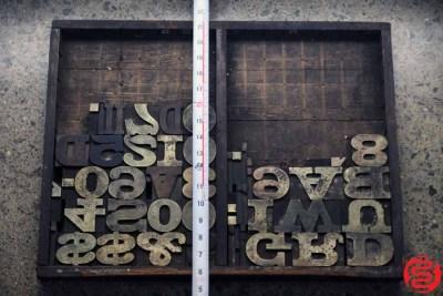 Assorted Letterpress Wood Type - 022120023020