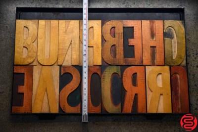 Assorted Letterpress Wood Type - 022120023405