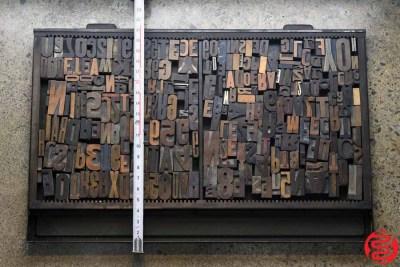 Assorted Letterpress Wood Type - 022120081620