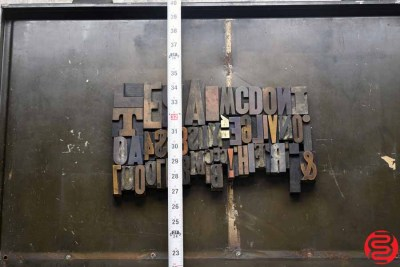 Assorted Letterpress Wood Type - 022420072455