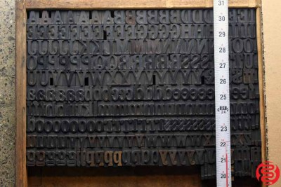 Assorted Letterpress Wood Type - Full Lowercase Full Capitals - 1 - 032620074300