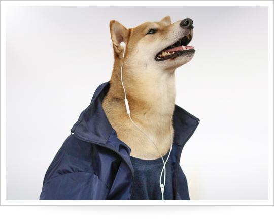 menswear-dog-gym-outfits_1429805739
