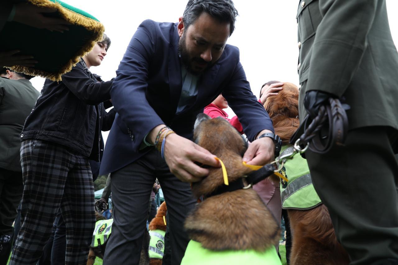 Condecoración perros y caballos - FOTO: Consejería de Comunicaciones