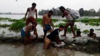 Photo of বগুড়ার শেরপুরে বন্যা নিয়ন্ত্রণ বাঁধে ভাঙন