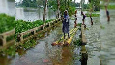 Photo of সোনাতলায় ১১টি সড়ক পানির নিচে